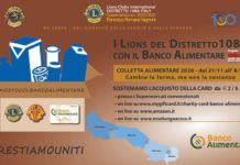lions colletta alimentare