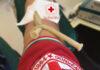 donatori sangue
