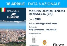 plastic free montenero