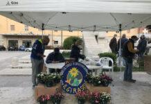 Azalea della ricerca - stand a Isernia