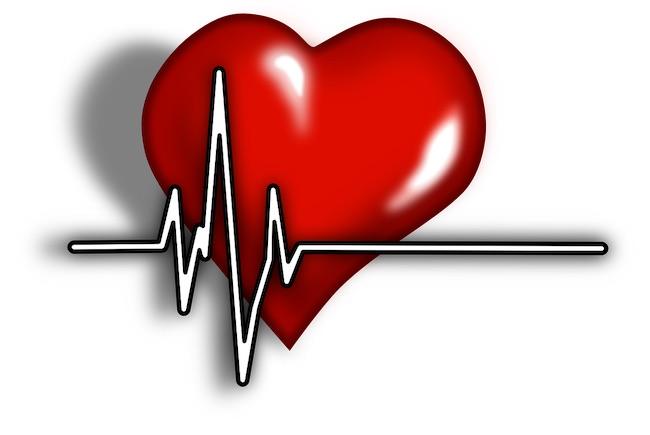 cuore cardiac