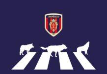 campagna abbonamenti campobasso calcio 2021-2022