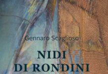 libro nidi di rondini