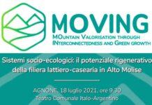 moving locandina