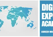 digital export academy