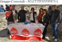gruppo comunale aido macchiagodena